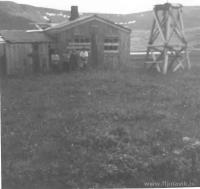 1969-6.jpg